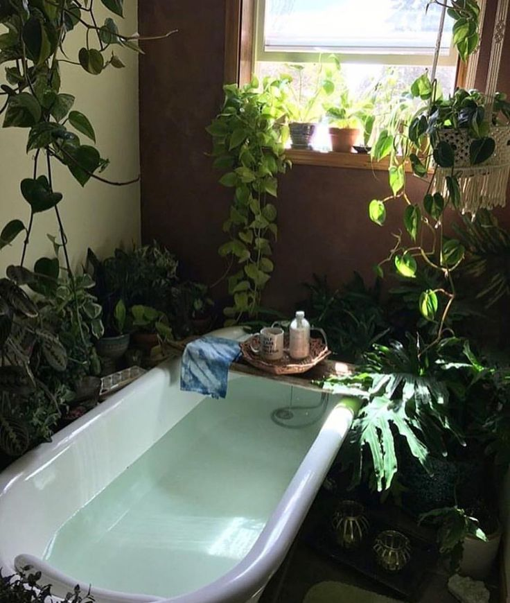 I have a huge jacuzzi tub, and plants like this would be perfect all around it!!!