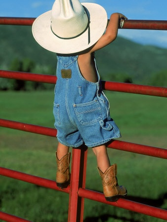 so cute...standing on a rail fence