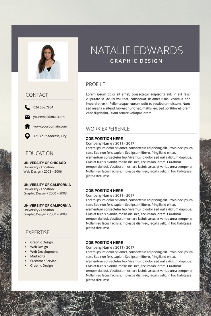 Modern Resume Template Creative Resume Templates
