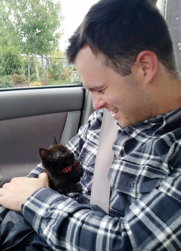 The Joy When This Guy is Chosen by a Tiny Kitten