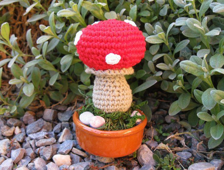 Fungo - Mushroom