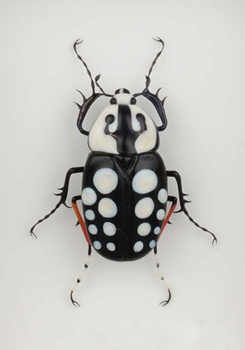 Miscellaneous Beetles - White Dotted Beetle by Emanuel Toffolo / Glass / ガラス工芸