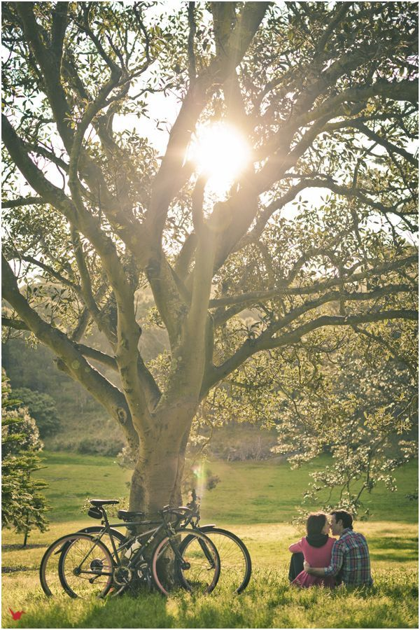 like the size of the people balanced in the screen. Sets a nice tone with the large tree. Looks natural. Like the effect of the sun