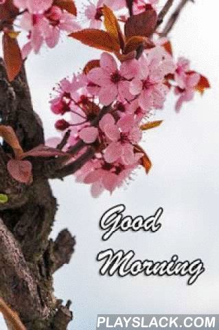 Best Good Morning Images  Android App - playslack.com , Best Good Morning Images are an awesome collection of refreshing images to enjoy and share every morning with your friends.Features:1.Share the Best Good Morning images via any social media service.2.Set any image as wallpaperTags: Best Good Morning Images