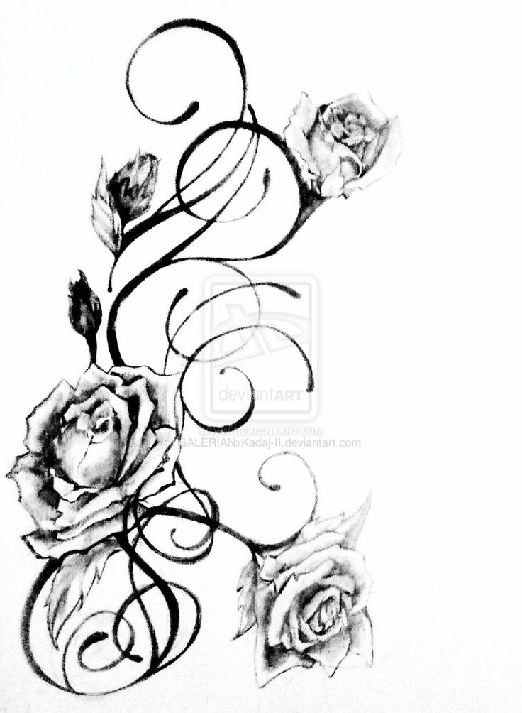 89 best sweet scribes images on pinterest tattoo ideas inspiration tattoos and ideas for tattoos. Black Bedroom Furniture Sets. Home Design Ideas