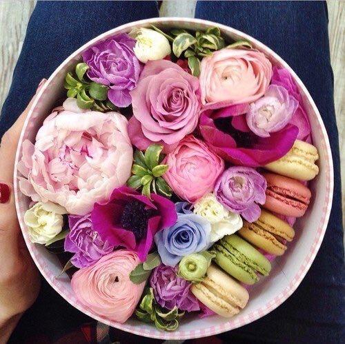 macarons ...♥...
