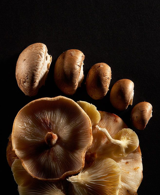 #Mushroom Foot | #Food Evolution by Aaron #Tilley #photo #photographie #photographer #photography #photographe #OlivierOrtion