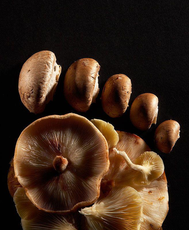 #Mushroom Foot | #Food Evolution by Aaron #Tilley #photo #photographie #photographer #photography #photographe #OlivierOrtion