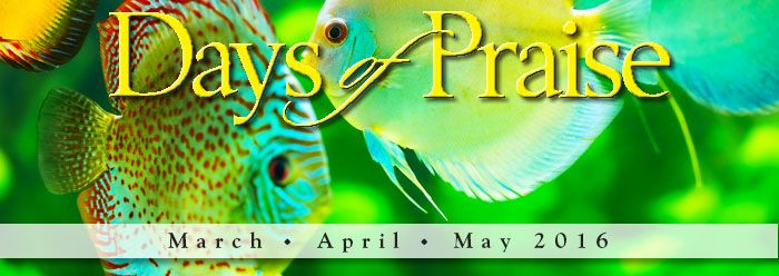 Days of Praise - http://www.icr.org/articles/type/6/