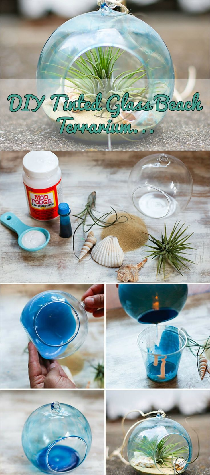 DIY Tinted Glass Beach Terrarium #diy #homedecor