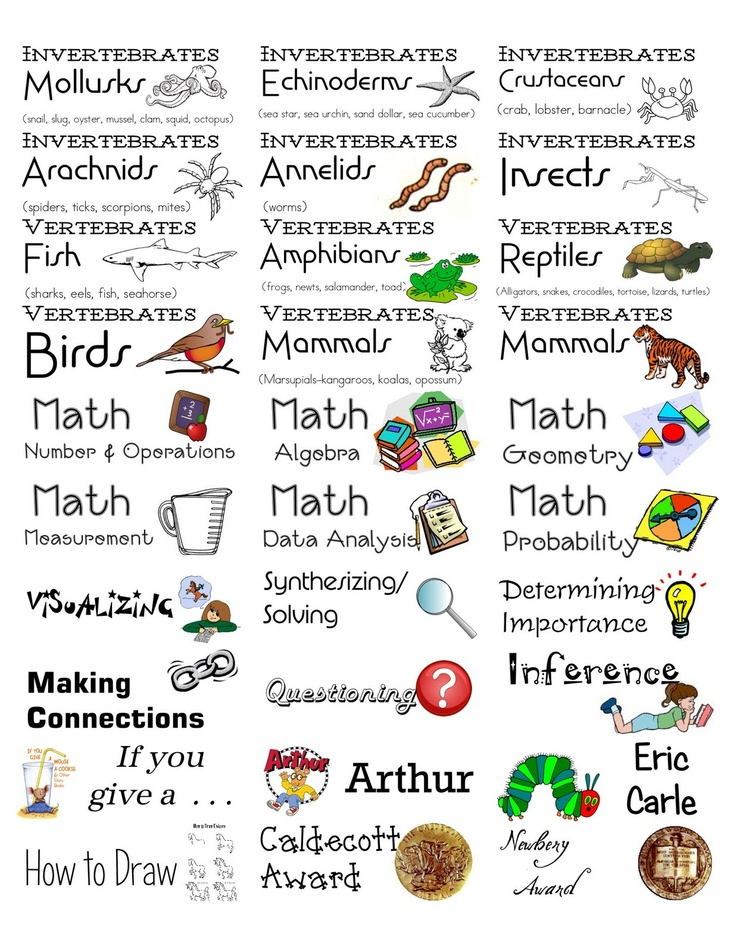 Ms. Carlie's Little Learners Preschool: Classroom Library Book Labels