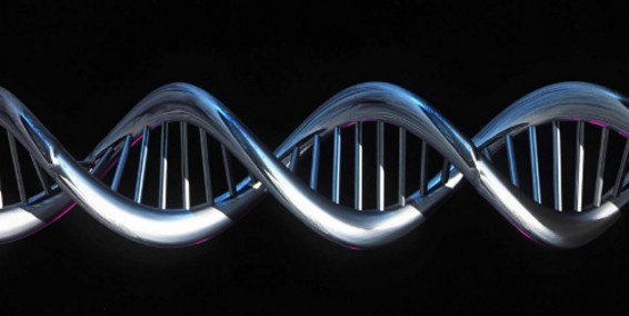 Científicos hacen nuevos descubrimientos del ADN.   Por: EFE. | 05 de Septiembre del 2012.