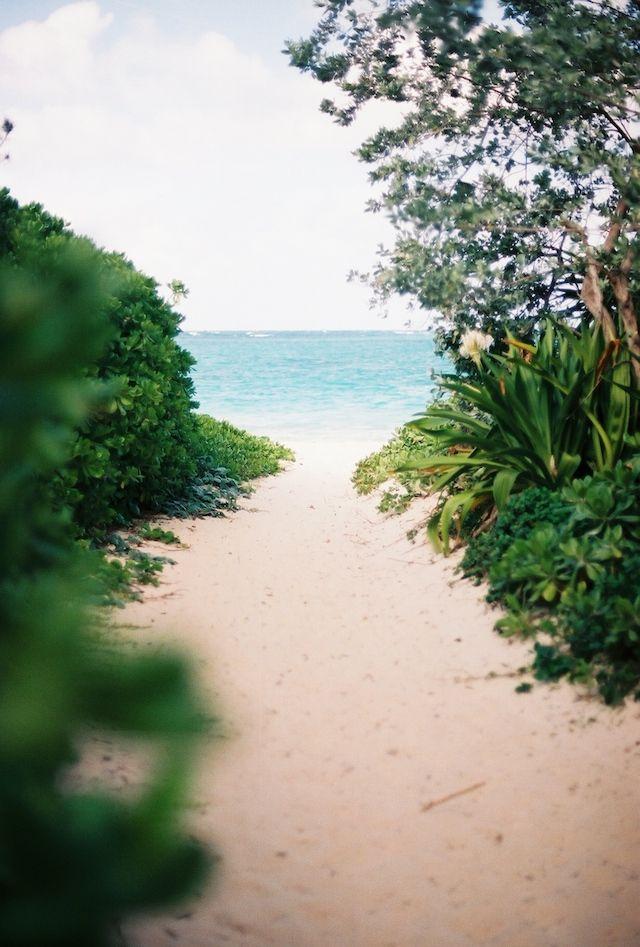 17 Best ideas about Honeymoon Island on Pinterest  Florida, Florida vacation...