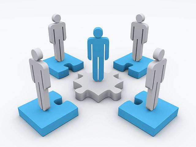 Social Media Expert, Collaboration