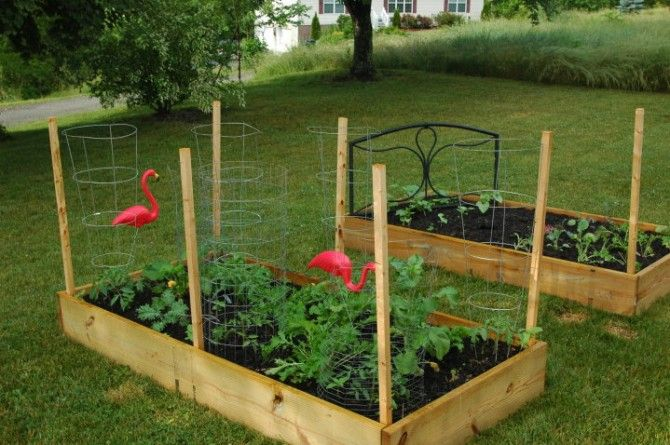 how to build frame for tomatoes