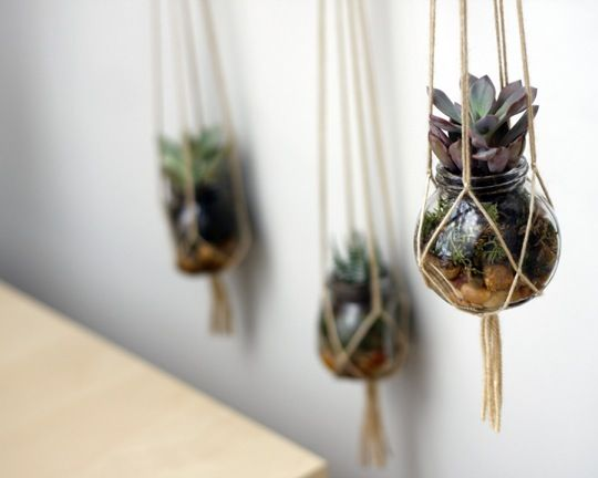 DIY Hanging Planters - http://www.apartmenttherapy.com/diy-hanging-planter-song-dance-167004 -- also consider air plants at West Elm