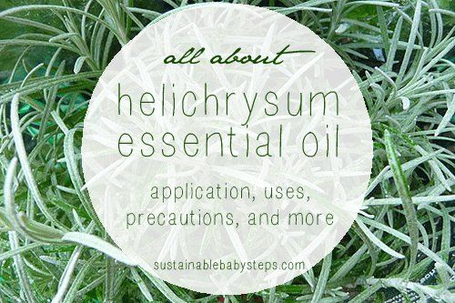 Learn how to use helichrysum essential oil for skin health, liver function, and more, via SustainableBabySteps.com
