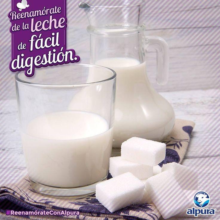 ¿Sientes que la leche deslactosada sabe más dulce? No, no es por que tenga más azúcar.   Descubre por qué tiene este peculiar sabor y #ReenamórateConAlpura http://bit.ly/1S9nTjQ?-