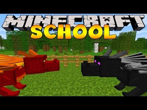 Minecraft School : VISITING THE PET STORE! - YouTube