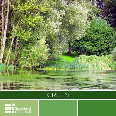 The natural greens, from forest to lime, are seen as tranquil and refreshing, with a natural balance of cool and warm (blue and yellow) undertones. #Green is considered the color of peace and ecology.