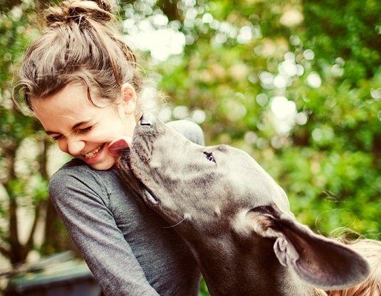 Tu perro es el mejor amigo que la vida te puede dar, así que captura esos hermosos momentos que pasas a su lado. Algún día agradecerás haberlo hecho.