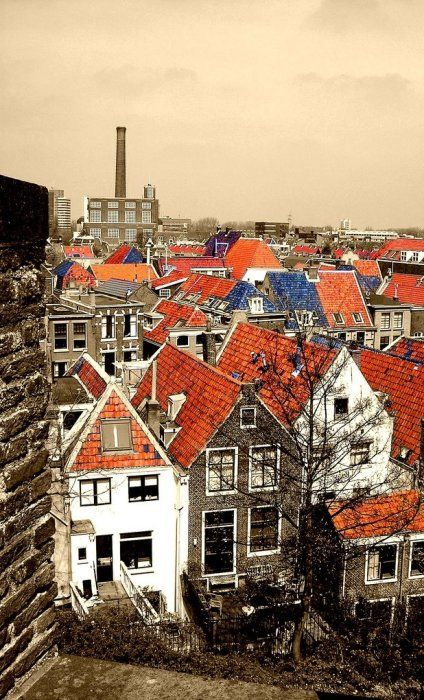 Leiden rooftops, Netherlands // by ssj_george on Flickr