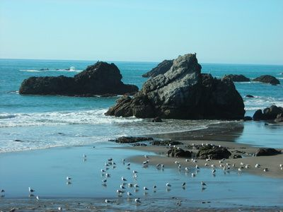 The State of Oregon is beautifully landscaped by nature and is full of mountainous areas, forested areas along with lakes and rivers. For outdoor lovers, Oregon is ideal for camping in your RV. Many ...