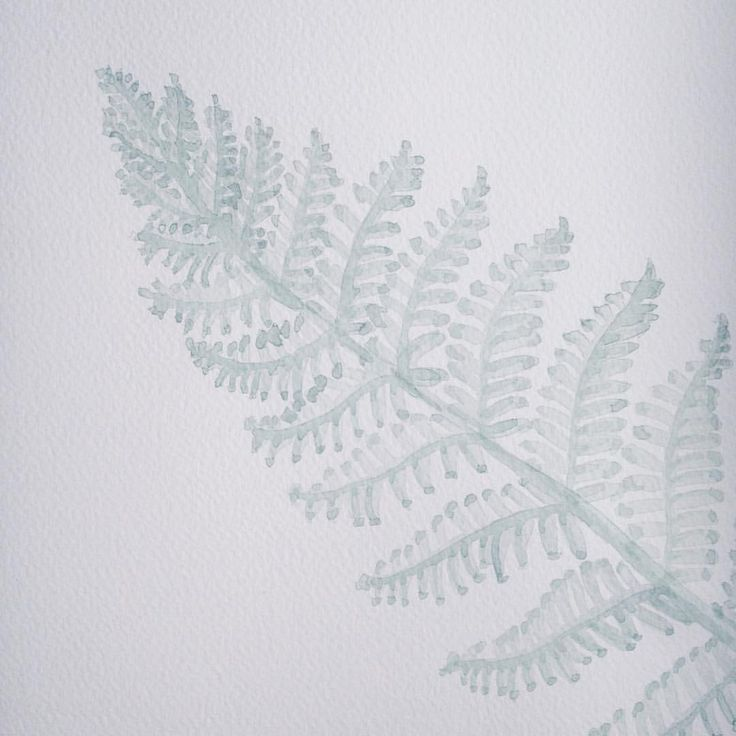 Instagram @kimartinsartist  || Number 12 || 21cmx29,5cm watercolor ink in watercolor paper with 300g/m2 #watercolor #painting #art #nature #plants #leafs #decoration #wall #kimartinsartist #color