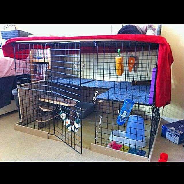 Homemade indoor rabbit cage ideas bund area
