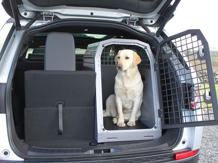 Model K9/B44ss | Border terrier | Dog crate, Dog cages, Dogs