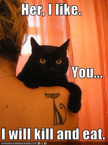 hahaTattoo Ideas, Funny Cat, A Tattoo, Cat Tattoo, Kitty, Blackcat, Black Cat, Animal, Cat Lady