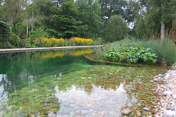 Swimming ponds blend seamlessly into your garden and do not need active filtration technology to stay clean as filtration is cleverly controlled by plants.