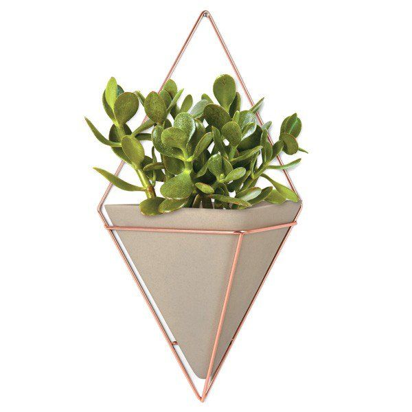 Umbra+Trigg+Wall+Vessel+Large+-+Copper+-+Add+a+geometric+edge+to+your+wall+with+this+stunning+diamond-shaped+hanging+wall+caddy+from+Umbra! The+Umbra+Trigg+Wall+Vessel+Large+-+Copper+is+a+gorgeous+fusion+of+shiny+copper-plated+wire+and+matt+concrete+resin,+which+would+make+a+brilliant+addition+to+any+room!+But+this+eye-catching+vessel+isn't+just+a+pretty+face;+it's+also+a+multi-purpose+storage+solution,+which+can+be+used+as+a+planter+or+general+container. Inspired+by+the+current...