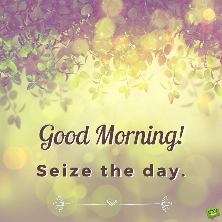 Good Morning! Seize the day.