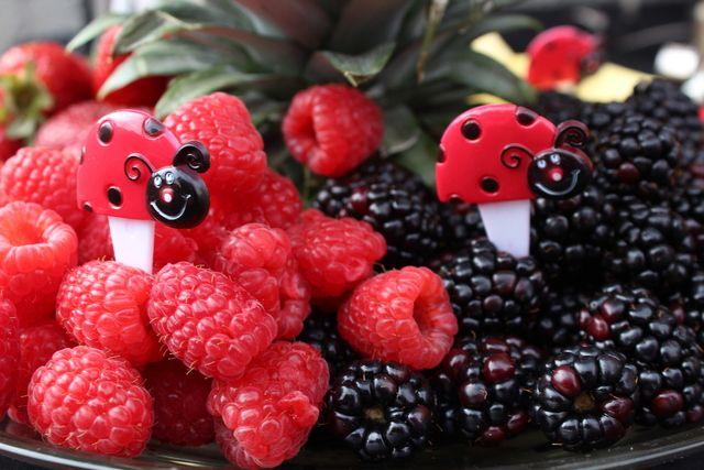 Photo 5 of 20: Ladybugs / Birthday Brooklynns 1st Birthday! Ladybug | Catch My Party