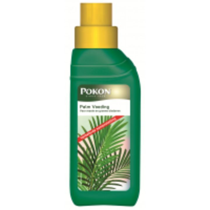 Pokon palm voeding 250 ml - heeft een nieuwe #recensie op: https://www.tuincentrumoverzicht.nl/product/287397/pokon-palm-voeding-250-ml/recensies#recensie-144453 - @TCoverzicht