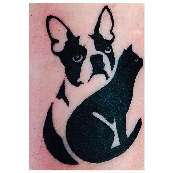les 25 meilleures id es de la cat gorie tatouage boston terrier sur pinterest art th me. Black Bedroom Furniture Sets. Home Design Ideas