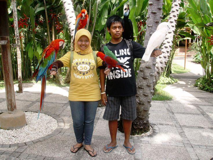 Bali Bird's Park