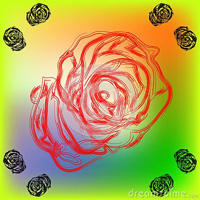 Sketch of roses. Line art roses on a colorful background