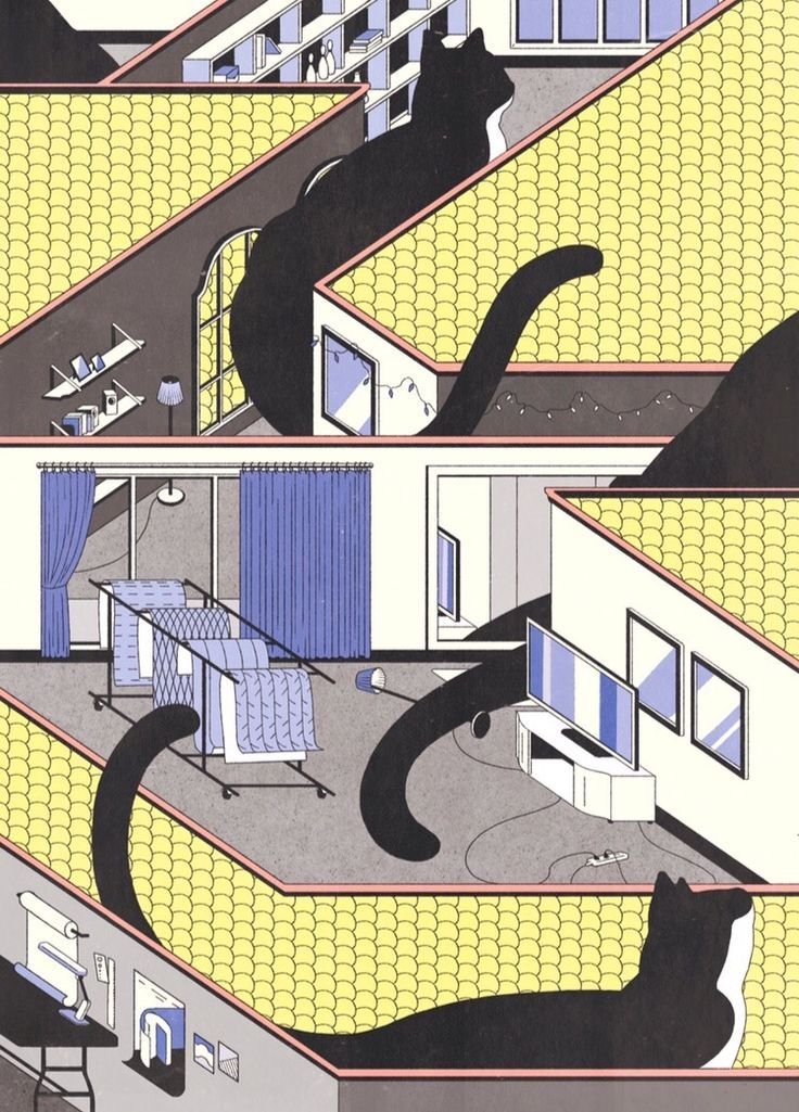 A cat lives in the house illustration pinterest for Gimnasio 9 y 57