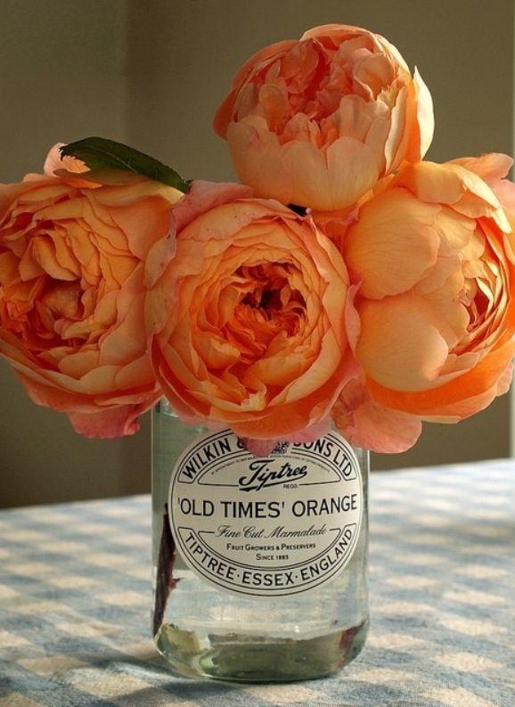 Peonies - lovely flowers