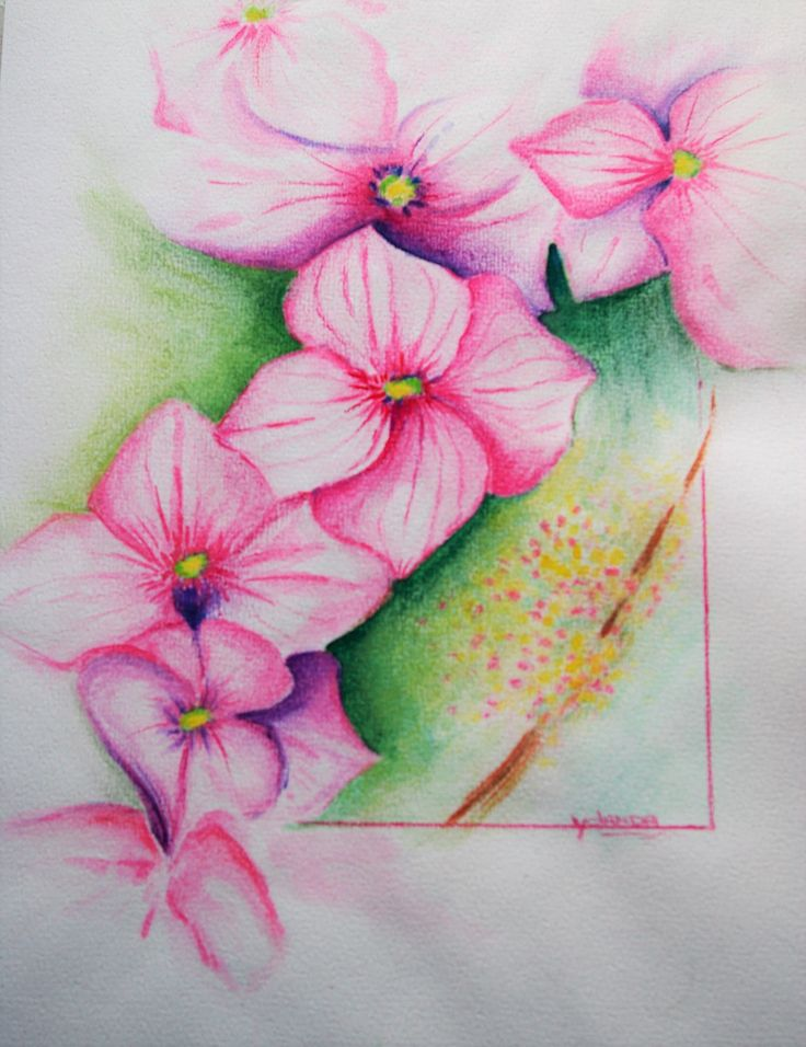 Aquarel / aquarel potlood - fantasy flowers (3)