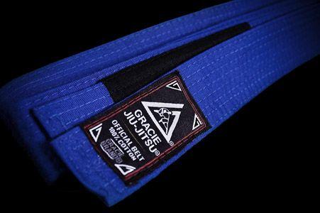 My goal is to successfully obtain a Blue Belt in Gracie Jiu-Jitsu via Gracie University.