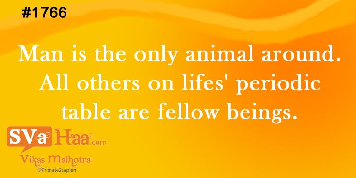 Man is the only animal around. All others on lifes' perodic table are fellow beings. #quote