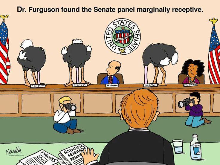 senate committeePanels Margin, Uc Editorial, Margin Receptions, Editorial Cartoons, Contest 2012, Cartoons Contest, Senators Panels, Senators Committee
