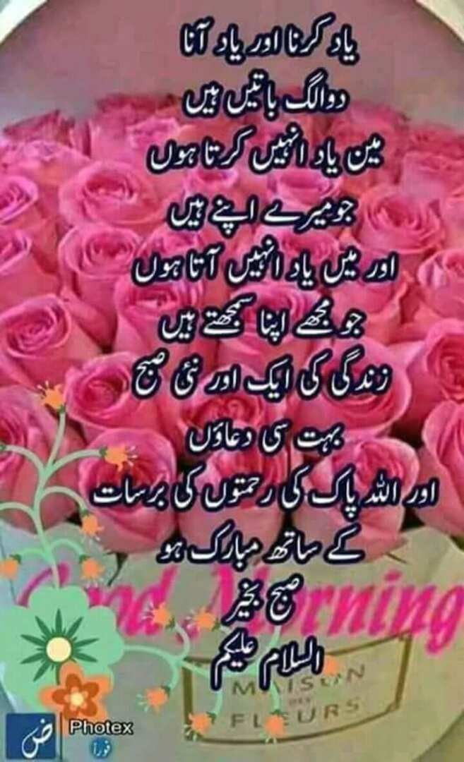 Pin by Shahid Khair on Greetings   Good morning quotes