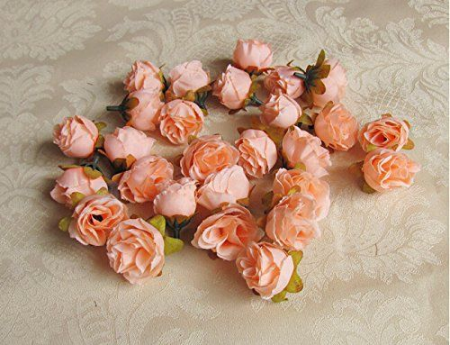 Peach Artificial Silk Rose Flower Heads for DIY Brooch Headpieces Garland Craft Embellishment Wedding Party Decoration (60PCS) dreammadestudio http://www.amazon.co.uk/dp/B00VE15I38/ref=cm_sw_r_pi_dp_1rRkvb18VD46K