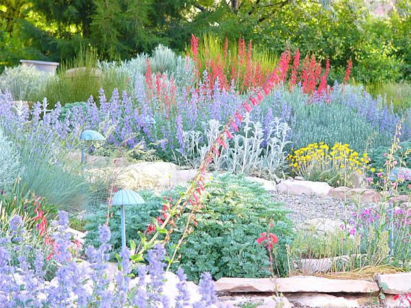14 Best Images About Xeriscaping On Pinterest Gardens Landscaping And Pathways