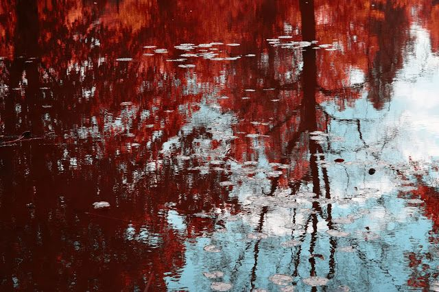 Goya Kusz: Nawodzia