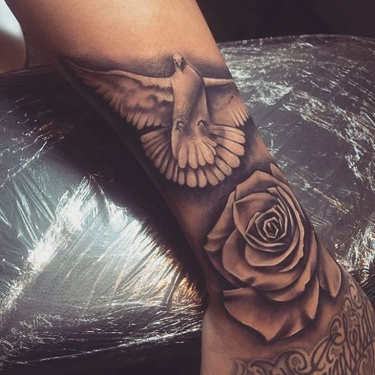 35 Best Peace Tattoos Images On Pinterest: Best 25+ Dove Tattoos Ideas On Pinterest